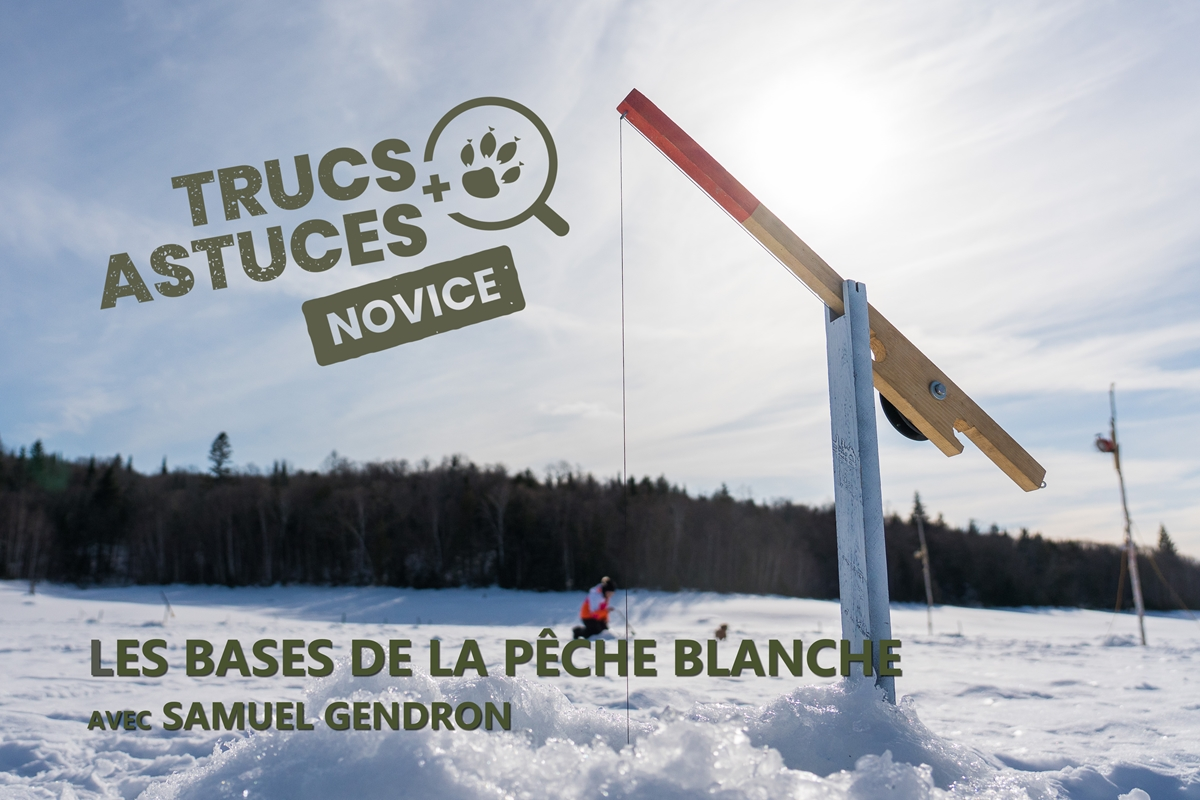article de peche blanche